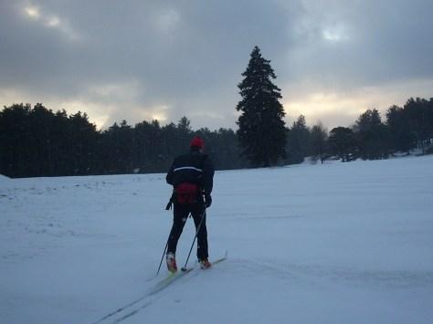 november-roll-and-ski-018
