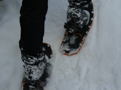 MSR Lightning Ascent 22 snowshoe... a good mountaineering shoe!