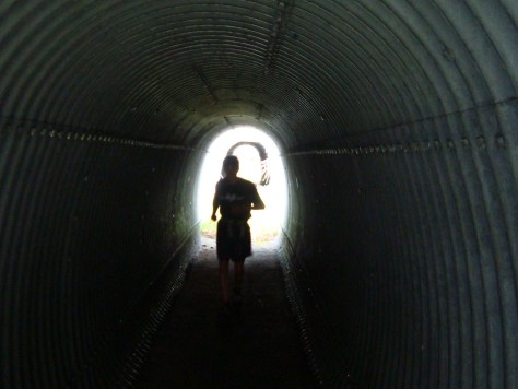 the light at the end of the SLOP FEST tunnel is near!