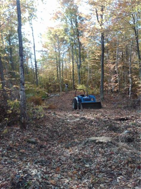 A swath of destruction or forest management?